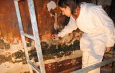 El camarín de la Virgen del Carmen - Restauración - Aurora Arroyo